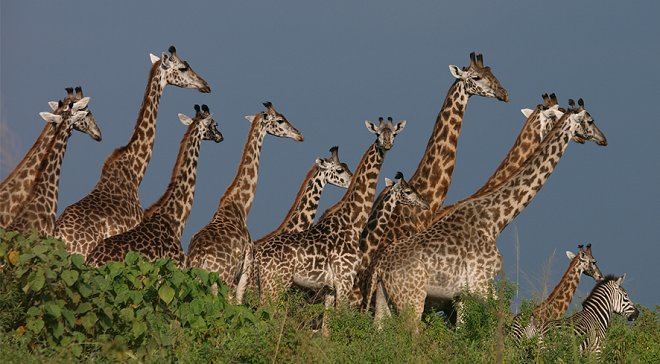 arusha-national-park-wide