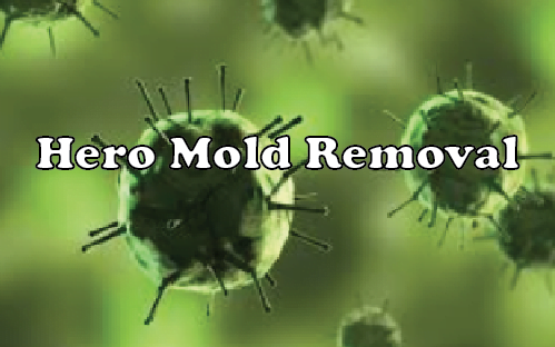 HERO-MOLD-LOGO